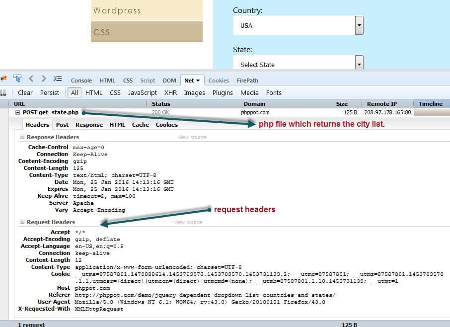 Execute JavaScript with JavascriptExecutor | Selenium-11